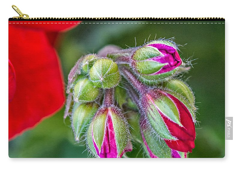 Steve Harrington Carry-all Pouch featuring the photograph Geranium by Steve Harrington