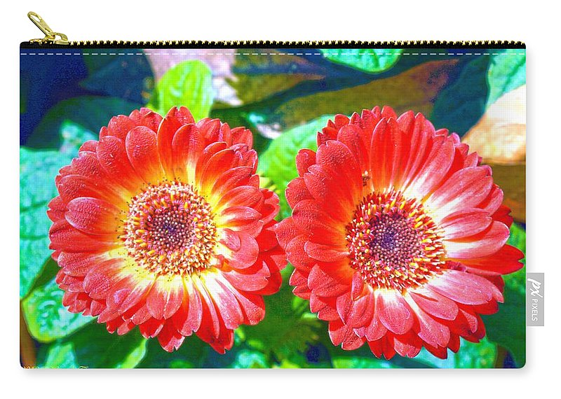 Gerbera Carry-all Pouch featuring the photograph Gerbera Couple by Sonali Gangane