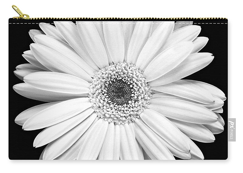 Gerber Carry-all Pouch featuring the photograph Single Gerbera Daisy by Marilyn Hunt