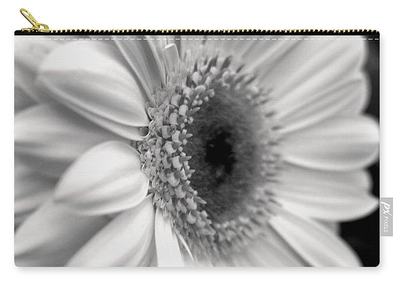 Flora Carry-all Pouch featuring the photograph Gerbera Daisy by Natasha Sweetapple