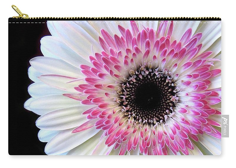 Flowers Carry-all Pouch featuring the photograph Gerbera by Jessica Jenney