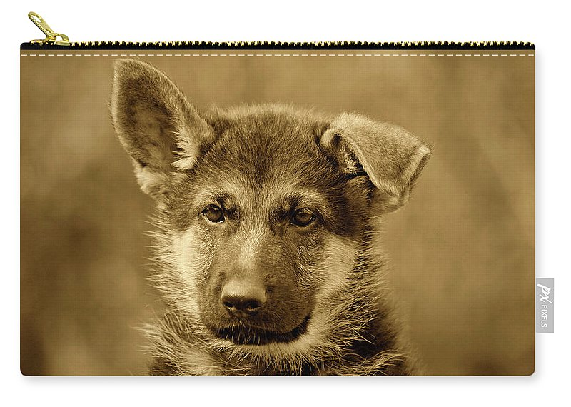 German Shepherd Carry-all Pouch featuring the photograph German Shepherd Puppy In Sepia by Sandy Keeton