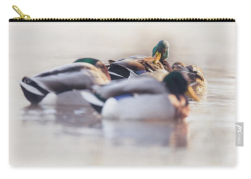 Day Carry-all Pouch featuring the photograph Getting Ready For The Day by Annette Bush