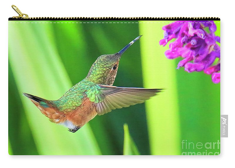 Hummingbird Carry-all Pouch featuring the photograph Getting There by Edita De Lima