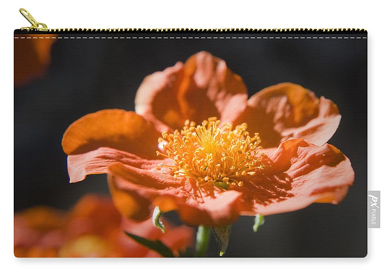 Geum Carry-all Pouch featuring the photograph Geum Scarlet Avens by Teresa Mucha