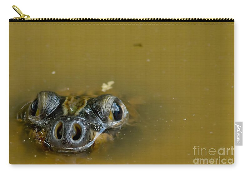 Amazon River Turtle Carry-all Pouch featuring the photograph Giant Amazonian River Turtle by Dant� Fenolio