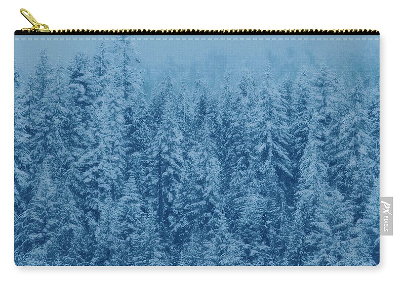 Acrylic Watercolor Illustration  Carry-all Pouch featuring the painting Giant Forest by Mari Biro