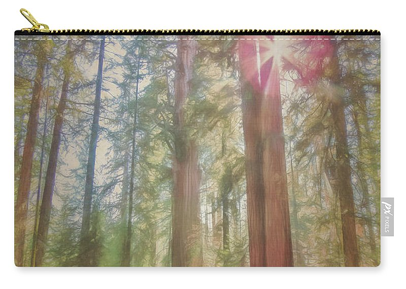 Sun Carry-all Pouch featuring the photograph Giant Sequoias by Daniel Penn