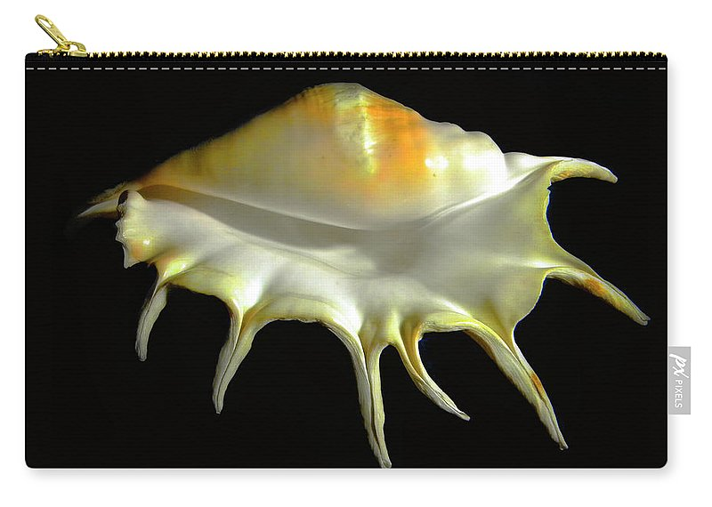 Frank Wilson Carry-all Pouch featuring the photograph Giant Spider Conch Seashell Lambis Truncata by Frank Wilson