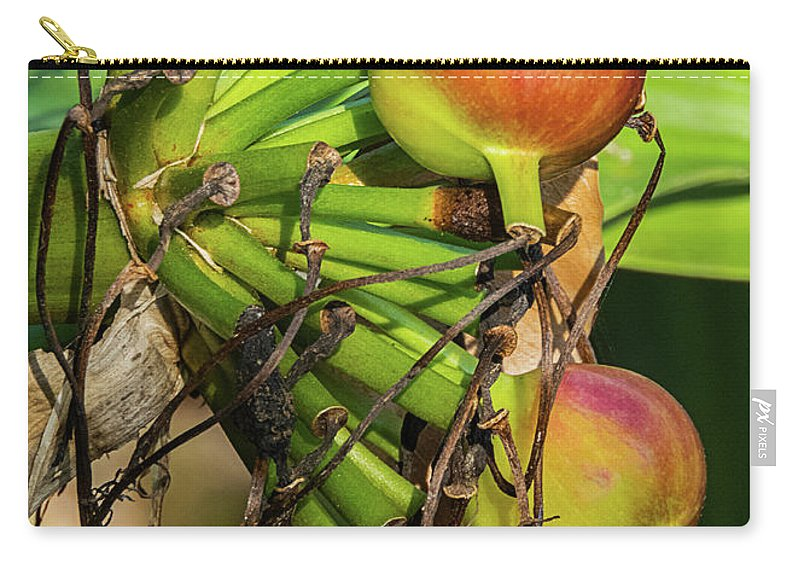 Lily Carry-all Pouch featuring the photograph Giant Spider Lily - After The Flowers Are Gone by Bob Slitzan