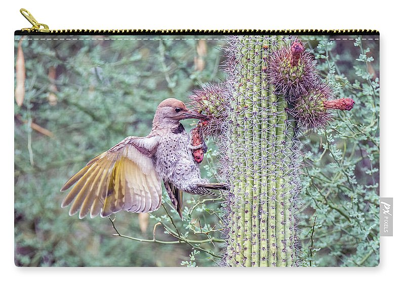 Juvenile Carry-all Pouch featuring the photograph Gilded Flicker 4167 by Tam Ryan
