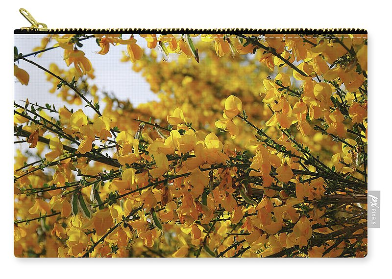 Ginestra Carry-all Pouch featuring the photograph Ginestre by Ilaria Andreucci