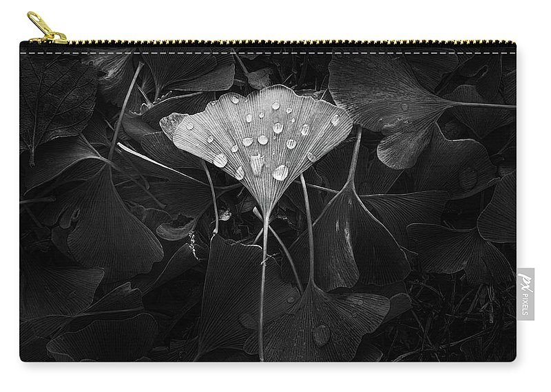 Leaf Carry-all Pouch featuring the photograph Ginkgo by Scott Norris