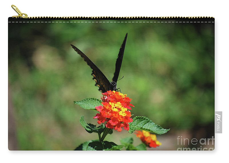Swallowtail Carry-all Pouch featuring the photograph Give Me A V by Lori Tambakis