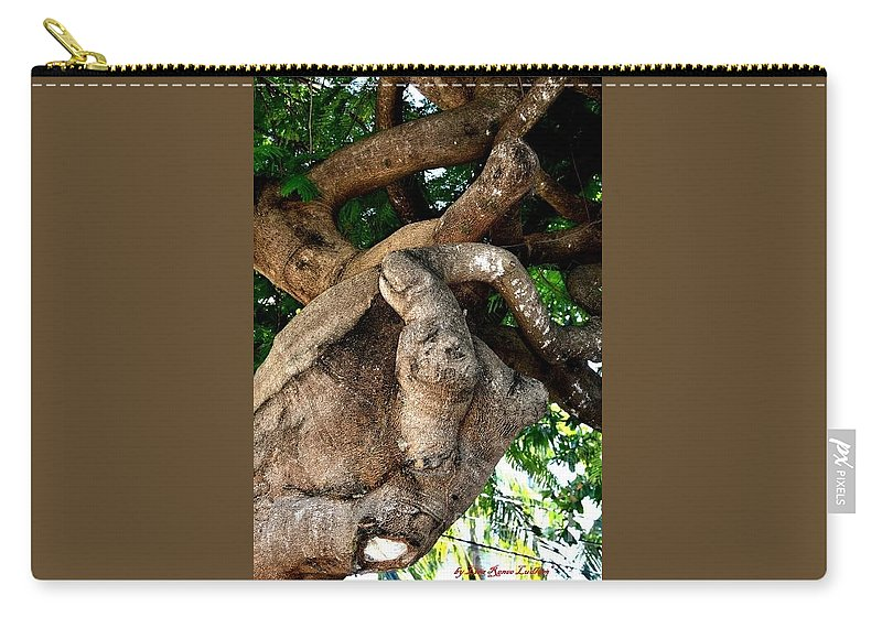 Giving Tree Carry-all Pouch featuring the photograph Giving Tree by Lisa Renee Ludlum