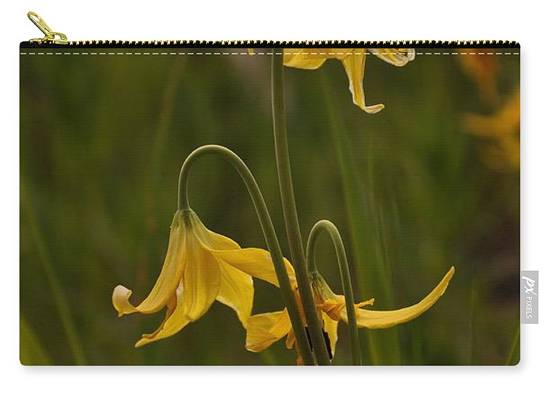 Yellowstone National Park Carry-all Pouch featuring the photograph Glacier Lilly by Frank Madia