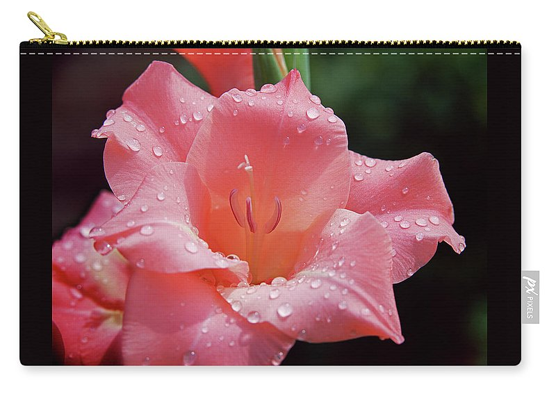 Gladiolus Carry-all Pouch featuring the photograph Glad All Over by Jim Benest