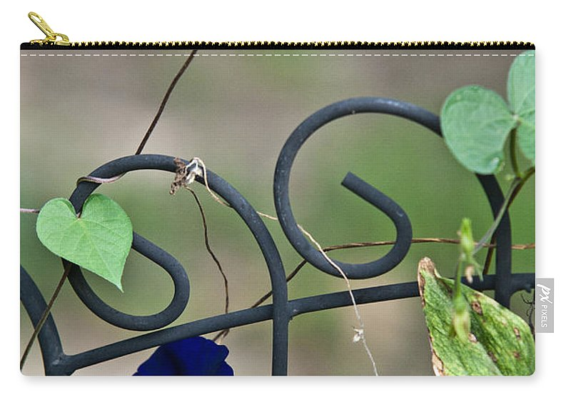 Morning Carry-all Pouch featuring the photograph Glorious Morning Glory by Douglas Barnett