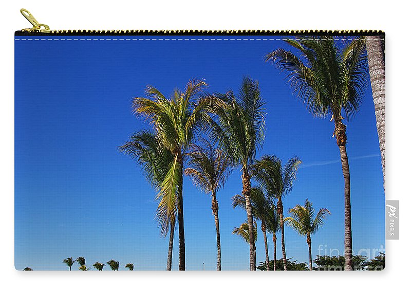 Palm Carry-all Pouch featuring the photograph Glorious Palms by Zal Latzkovich