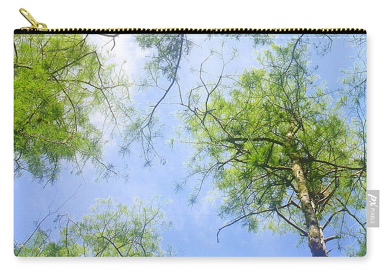Carry-all Pouch featuring the photograph Glowing Trees by Jane Merrit