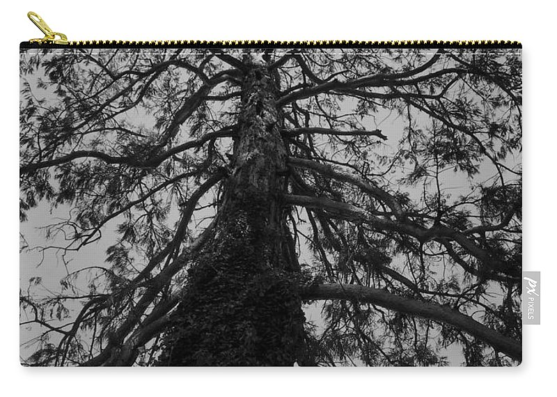 Nature Carry-all Pouch featuring the photograph Gnarly Tree by Juergen Weiss