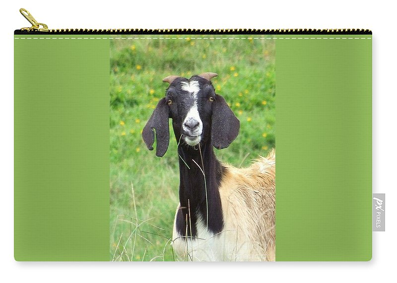 Black Carry-all Pouch featuring the photograph Goat Dental Floss by Mary Deal