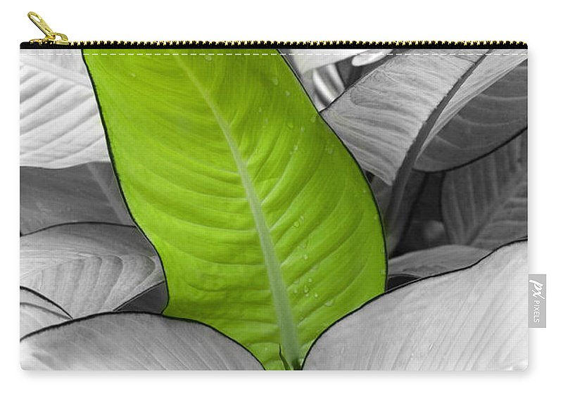 Leaf Carry-all Pouch featuring the photograph Going Green Lighter by Marilyn Hunt
