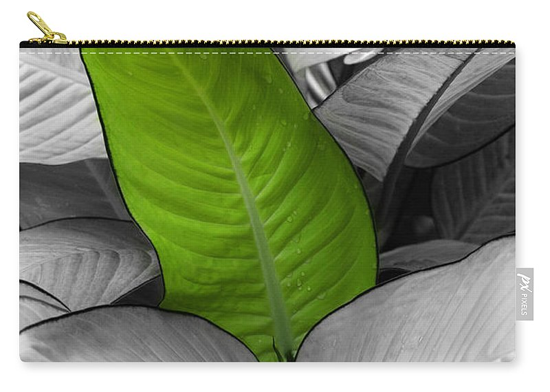 Green Carry-all Pouch featuring the photograph Going Green by Marilyn Hunt