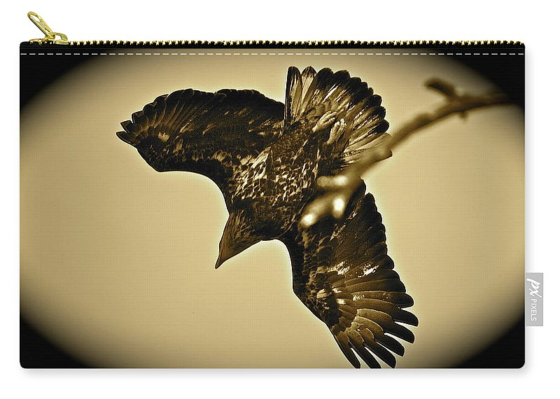 Bird Carry-all Pouch featuring the photograph Going Hunting by Diana Hatcher