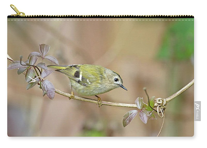 Goldcrest Carry-all Pouch featuring the photograph Goldcrest by Peter Walkden