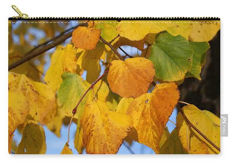 Autumn Carry-all Pouch featuring the photograph Golden by Carol Lynch