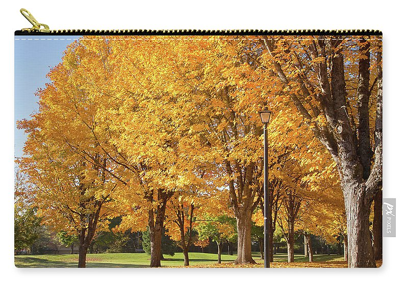 Yellow Carry-all Pouch featuring the photograph Golden Colors In Autumn Bellavista Park Oregon. by Gino Rigucci