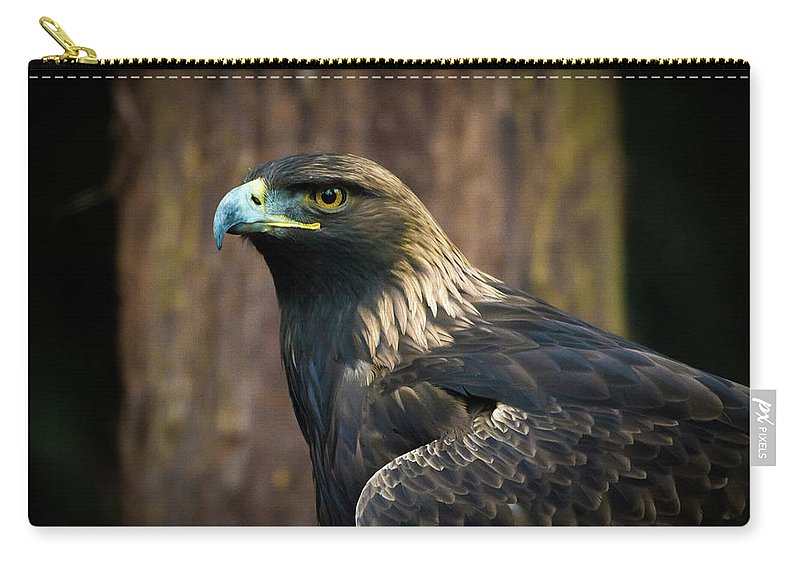 Eagle Carry-all Pouch featuring the photograph Golden Eagle 5 by Jason Brooks