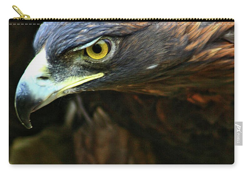 Golden Eagle Carry-all Pouch featuring the photograph Golden Eye by Scott Mahon