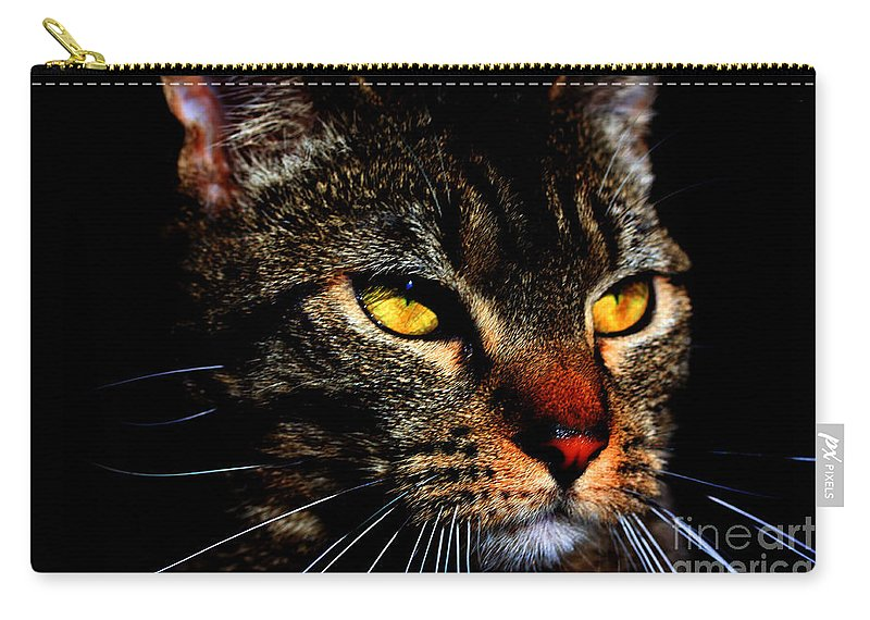 Cat Carry-all Pouch featuring the photograph Golden Eyes by Nick Gustafson