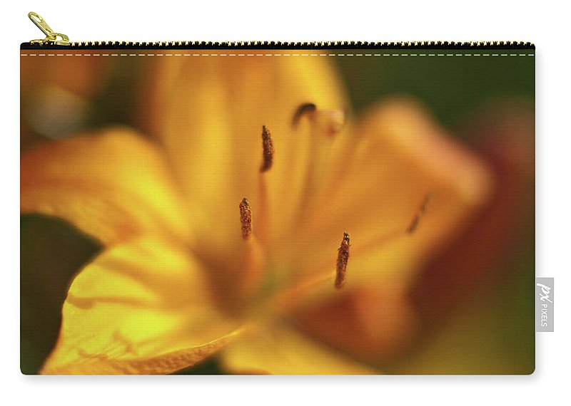 Lilly Carry-all Pouch featuring the photograph Golden Gazer by Mike Reid
