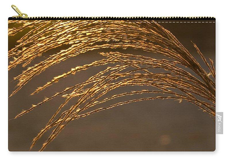 Grass Carry-all Pouch featuring the photograph Golden Grass by Douglas Barnett