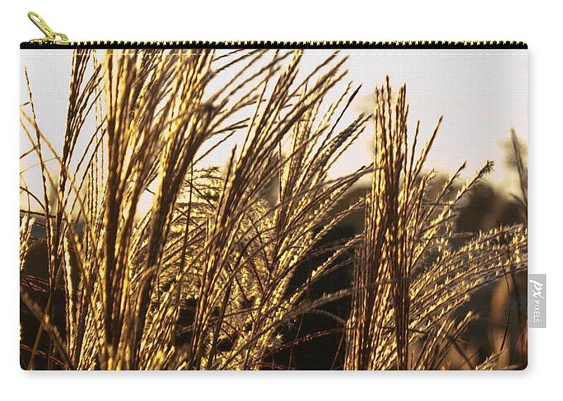 Golden Carry-all Pouch featuring the photograph Golden Grass Flowers by Douglas Barnett
