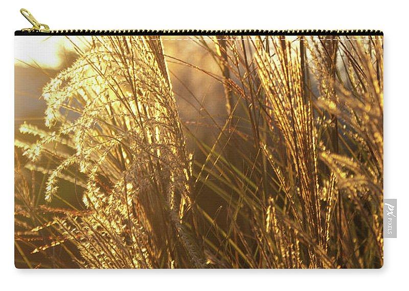 Golden Carry-all Pouch featuring the photograph Golden Grass In Sunset by Douglas Barnett