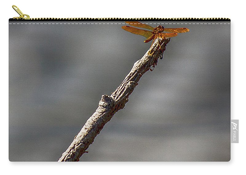 Dragon Fly Carry-all Pouch featuring the photograph Golden by Larry Pegram