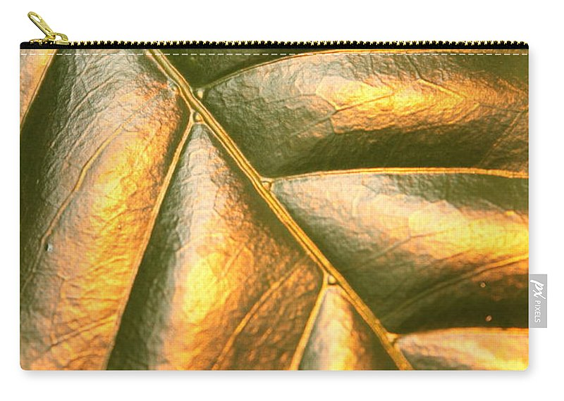 Gold Carry-all Pouch featuring the photograph Golden Leaf by Carol Groenen