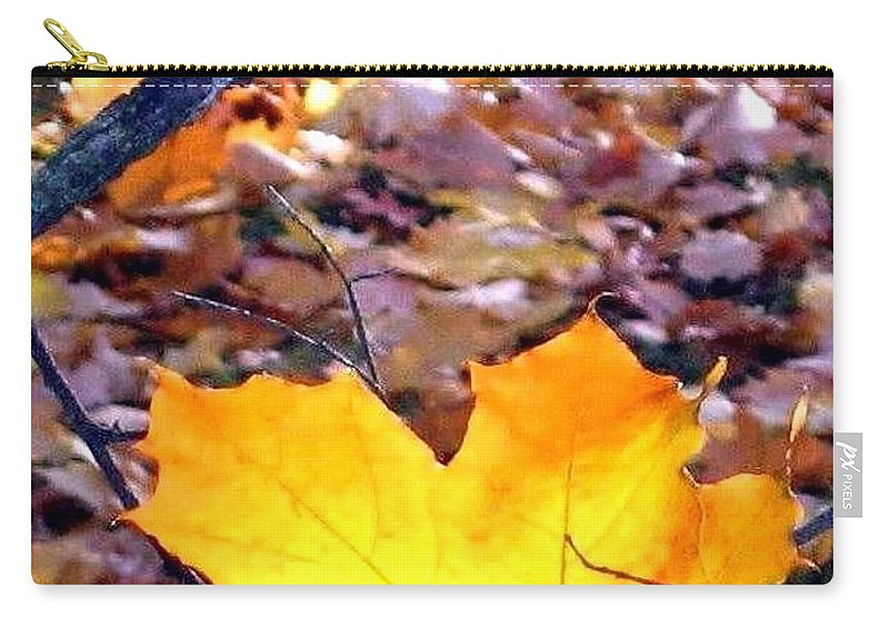 Maple Leaf Carry-all Pouch featuring the photograph Golden Leaf by Will Borden