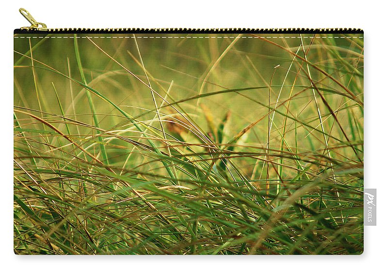 Autumn Carry-all Pouch featuring the photograph Golden Meadow September by RC DeWinter