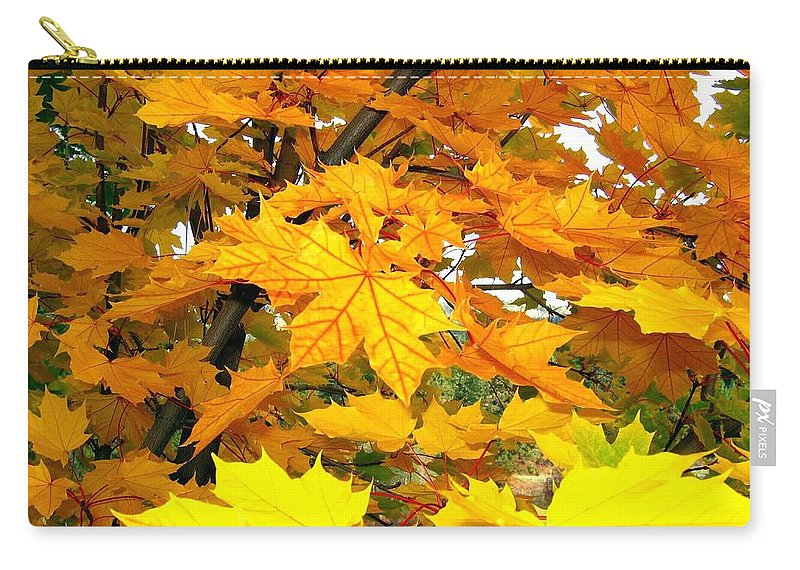 Autumn Carry-all Pouch featuring the photograph Golden Moments by Will Borden
