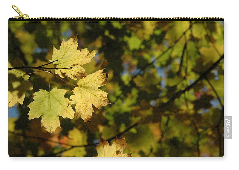 Yellow. Leaves Carry-all Pouch featuring the photograph Golden Morning by Trish Hale