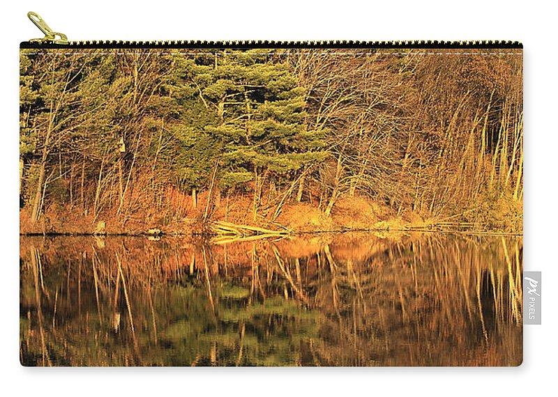 Light Carry-all Pouch featuring the photograph Golden Natural Light by Deborah Benoit
