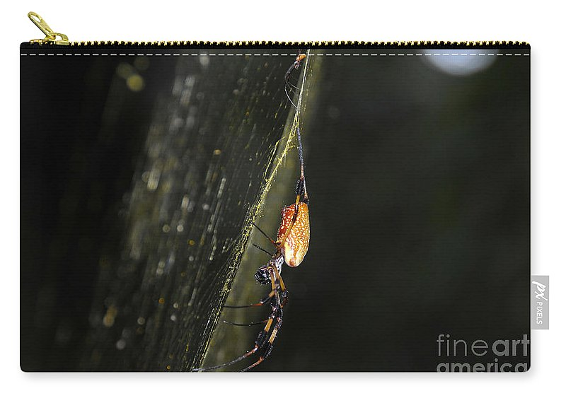 Golden Orb Spider Carry-all Pouch featuring the photograph Golden Orb Spider by David Lee Thompson