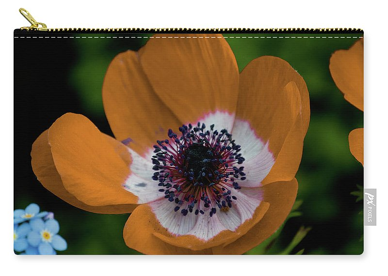 Gold Carry-all Pouch featuring the photograph Golden Poppy by Trish Tritz