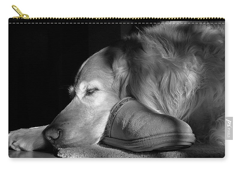 Golden Retriever Carry-all Pouch featuring the photograph Golden Retriever Dog With Master's Slipper Black And White by Jennie Marie Schell