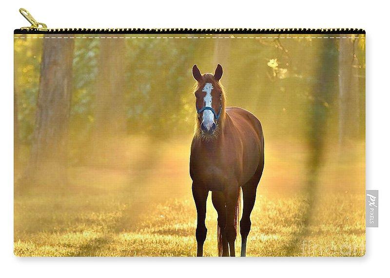 Golden Spirit Carry-all Pouch featuring the photograph Golden Spirit 1 by Lisa Renee Ludlum